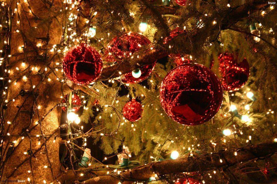 Download Christmas Lights Wallpaper Wallpaper Wallpapers Com Christmas Lights Wallpaper Christmas Lights Background Christmas Wallpaper Backgrounds Awesome live christmas lights wallpaper