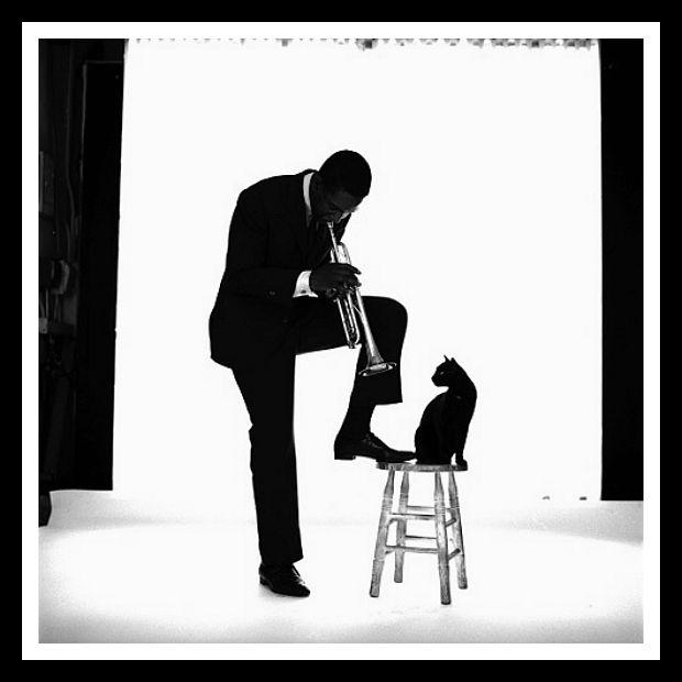 Photographer Jerry Schatzberg of Kenny Dorham 1959 – High Low Vintage