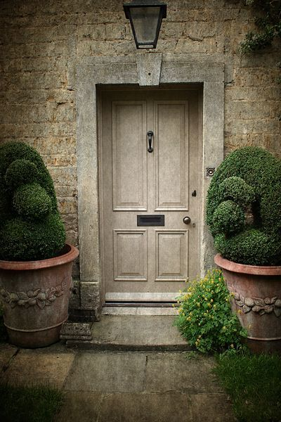 Boxwoods In Front Of House Entrance