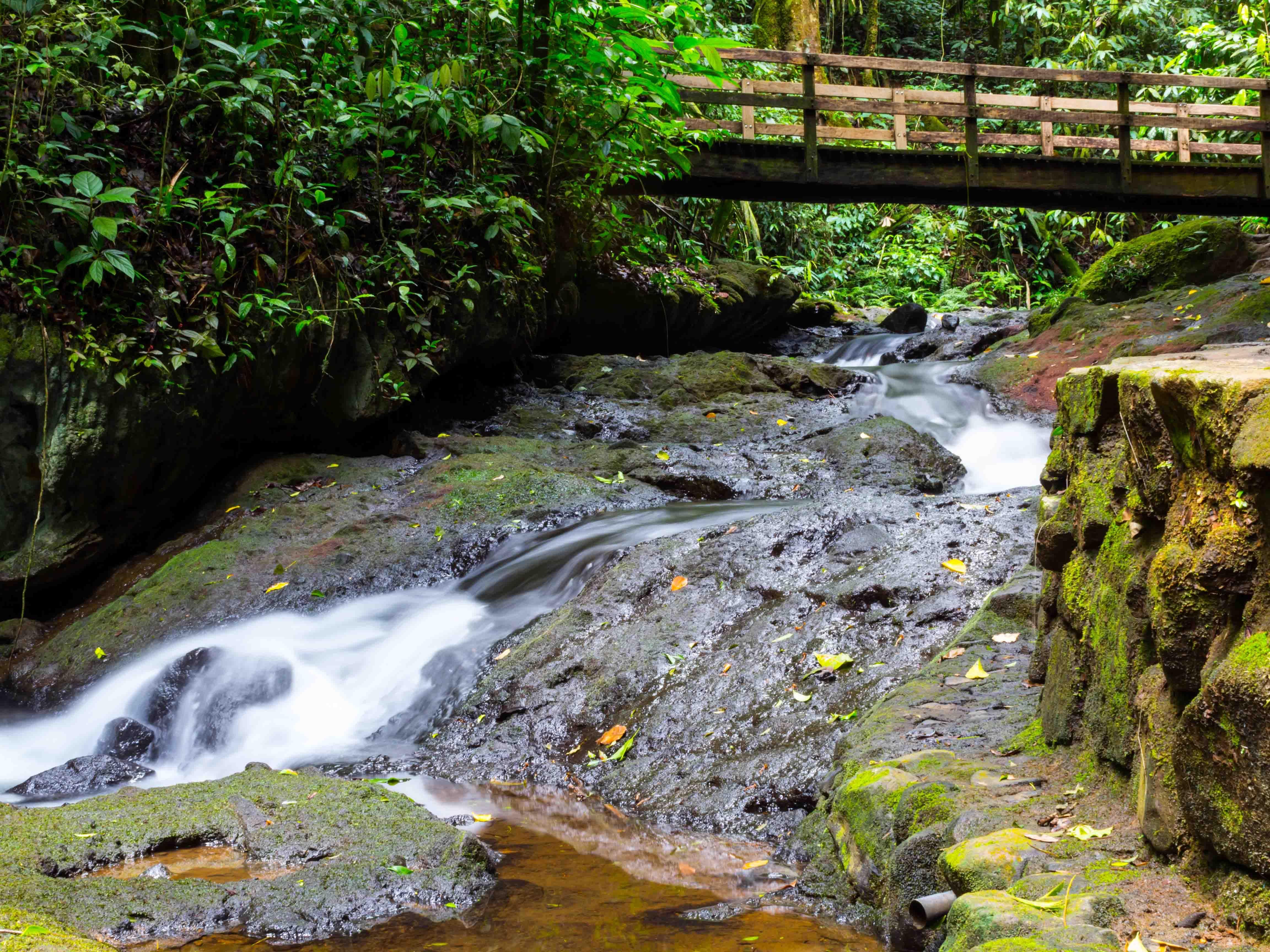 """""""Termales del Bosque"""" Ciudad Quesada, Alajuela, Costa Rica"""