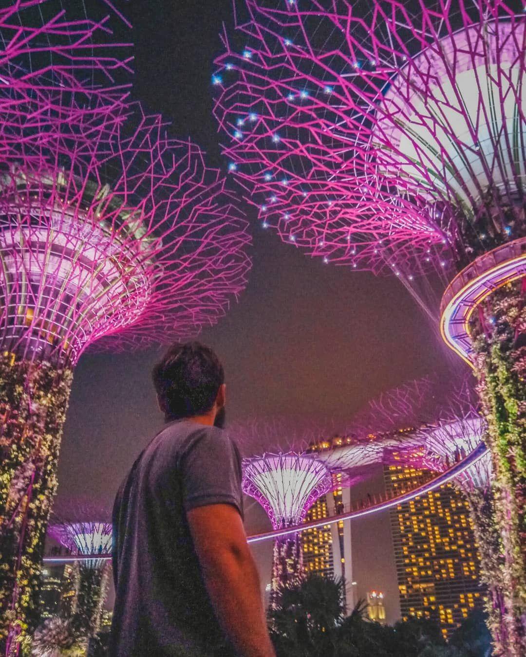 5e625935dbfc220a31e63d2989a5caae - Gardens By The Bay Timings Light Show
