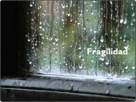 Fragilidad - Presuntos Implicados
