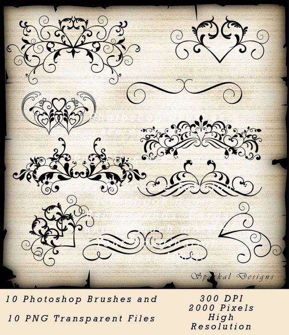 Wedding Flourish Clip Art Photoshop Brushes Instant Download Vintage Themed Clipart Digital Scrapbooking