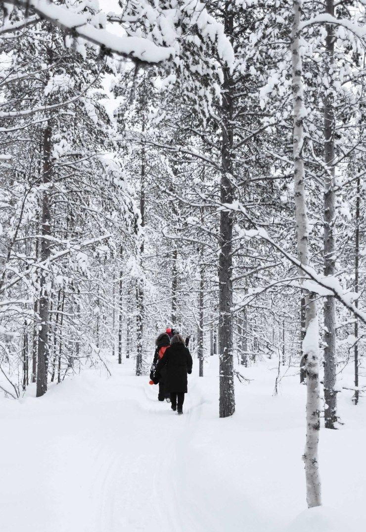 Exploring Finnish Lapland in winter | These Four Walls