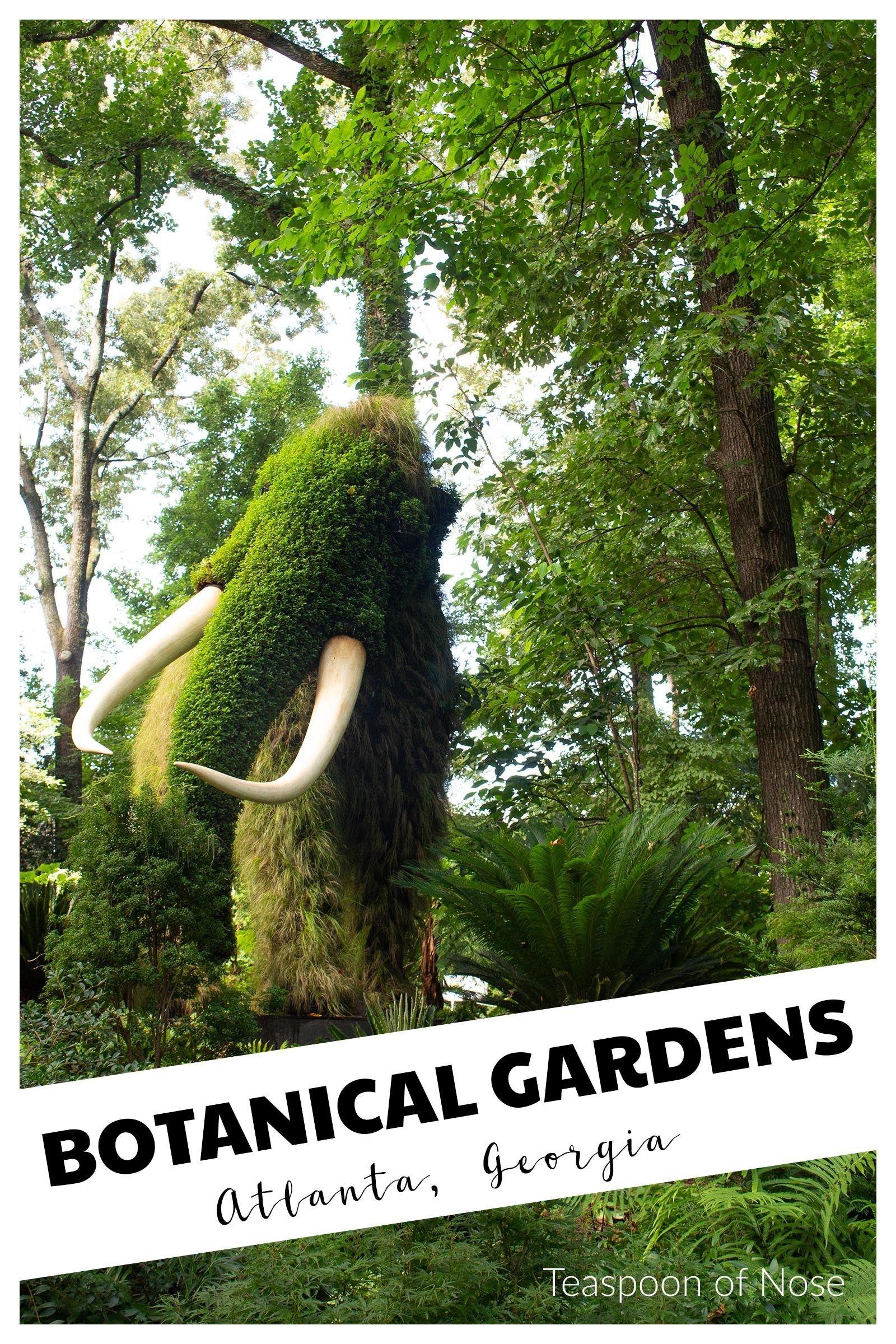 Atlanta Botanical Garden #botanicgarden