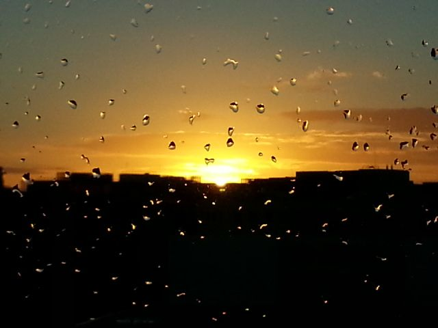 Watch the rain