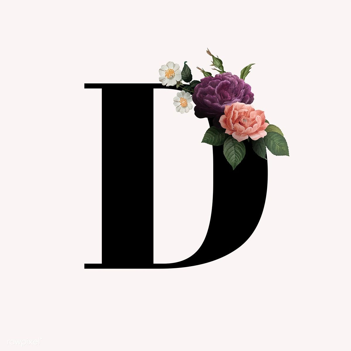 Download Free Vector Of Classic And Elegant Floral Alphabet Font Letter D Vector About D Letter D Alp Lettering Alphabet Fonts Fonts Alphabet Lettering Fonts