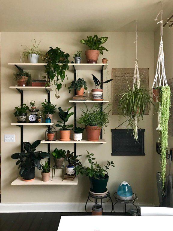 https://www.reddit.com/r/gardening/comments/avdutv/we_made ...