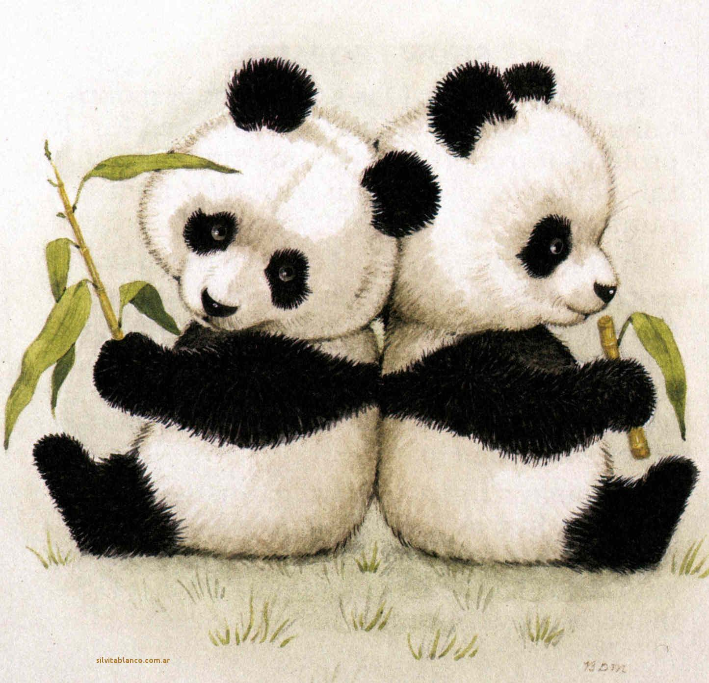 oso panda …   Pinteres…