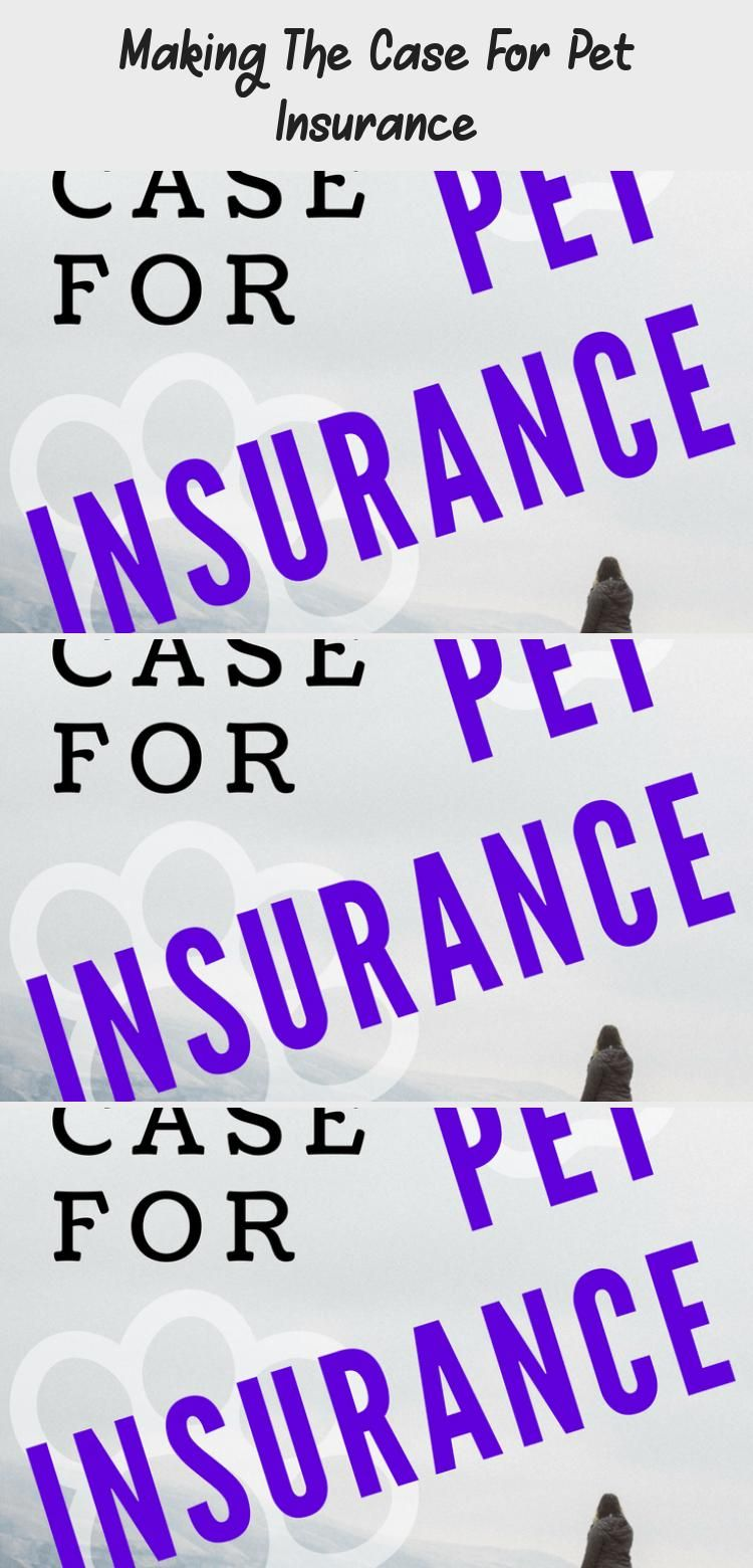 My experience with pet insurance and how it is helping us