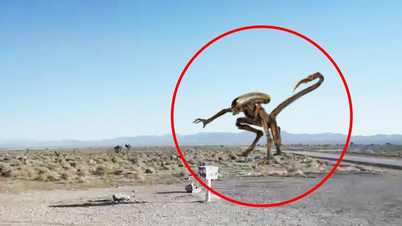 5 aliens caught on camera spotted in real life 3 youtube ufo