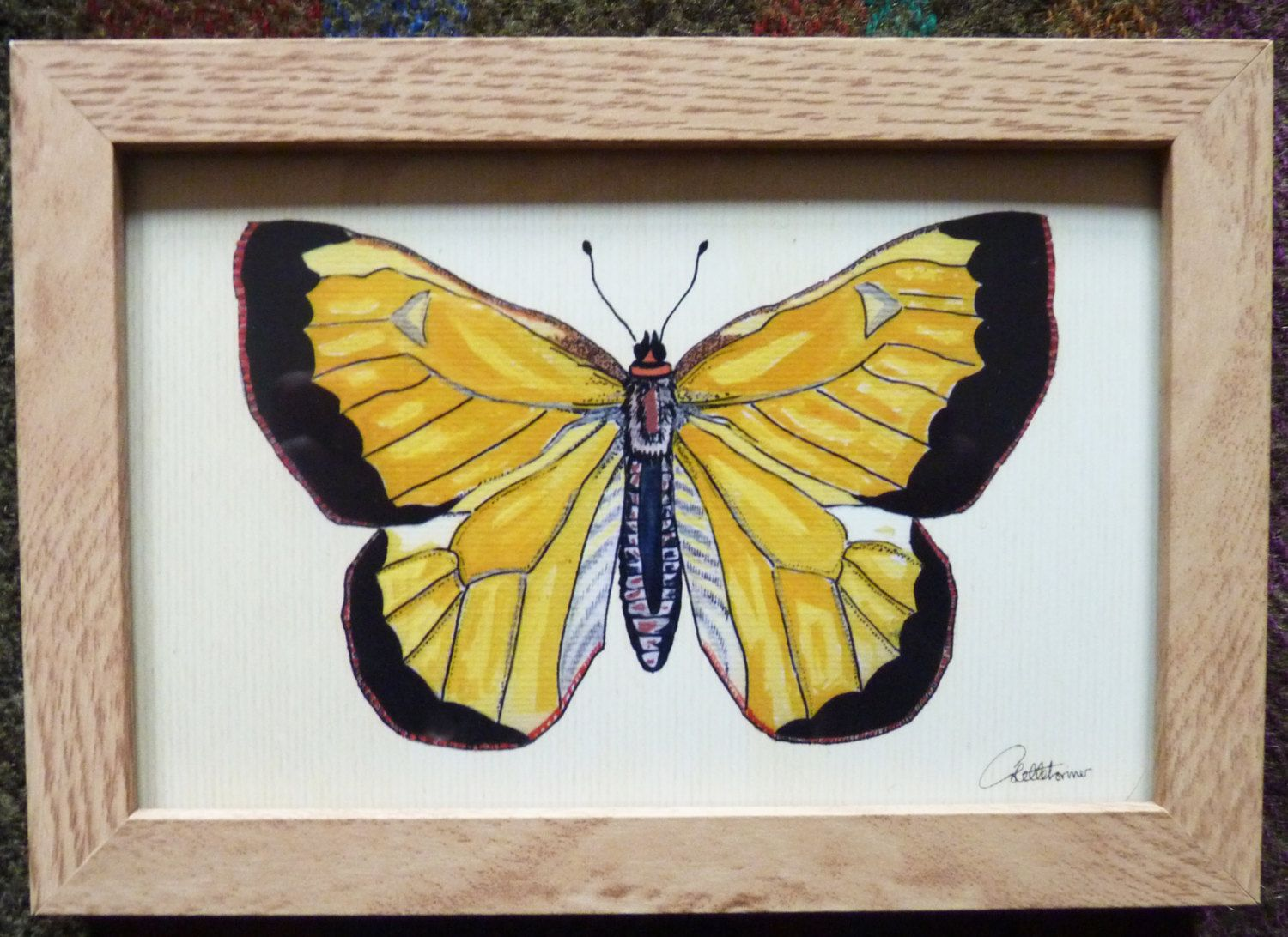 Yellow Butterfly Picture Butterfly Painting Butterfly Artwork Framed ...