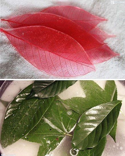 Blumenel Knüpfen comment réaliser un objet déco avec des feuilles d arbre