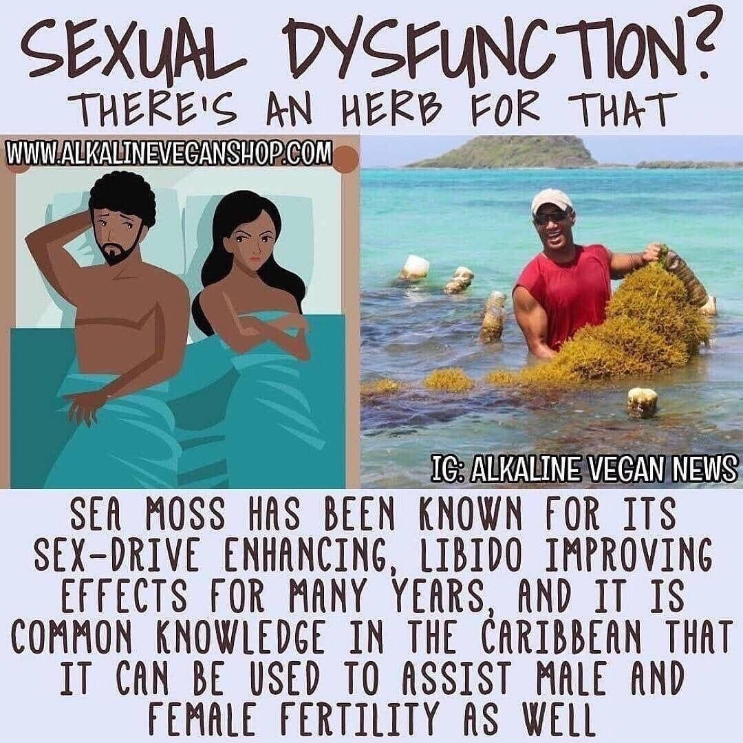 Follow alkaline_vegan_news to purchase our sea moss and
