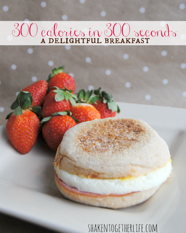 300 Calorie Breakfast in 300 Seconds or Less - Two Delicious Ideas! #300caloriemeals