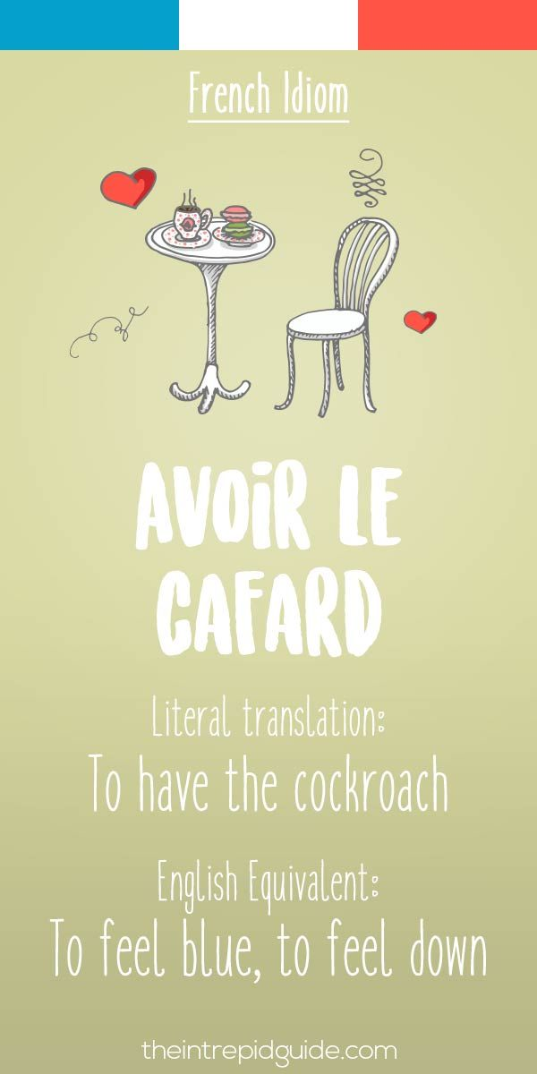 25 Funny French Idioms Translated Literally | French ...