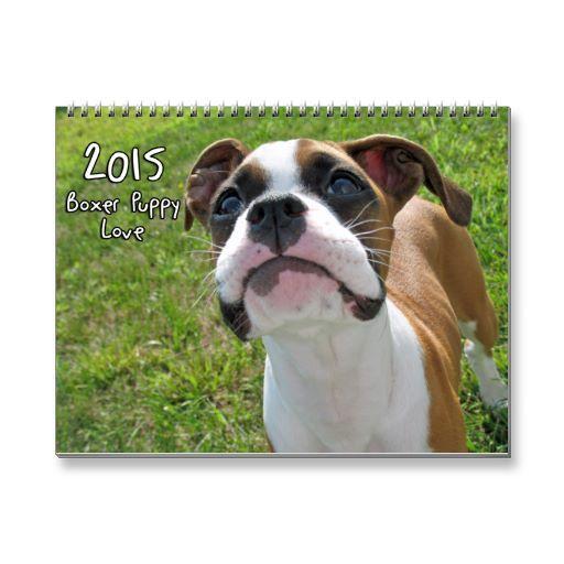 2015 Boxer Puppy Love Calendar