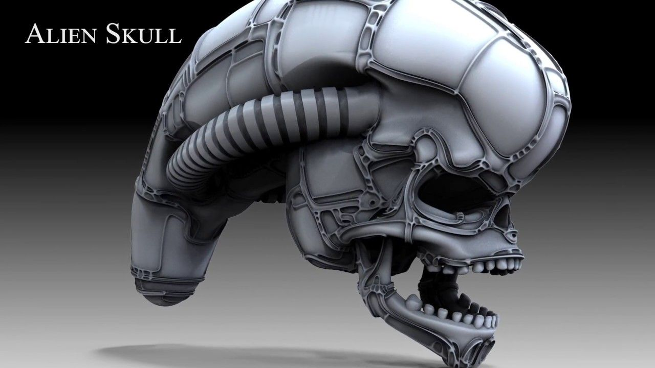 Alien Skull Construction (Zbrush 2018) | My Works | Alien skull