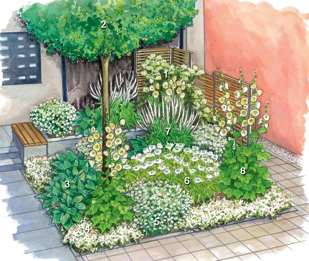 Vorgarten, Vorgarten Bepflanzen