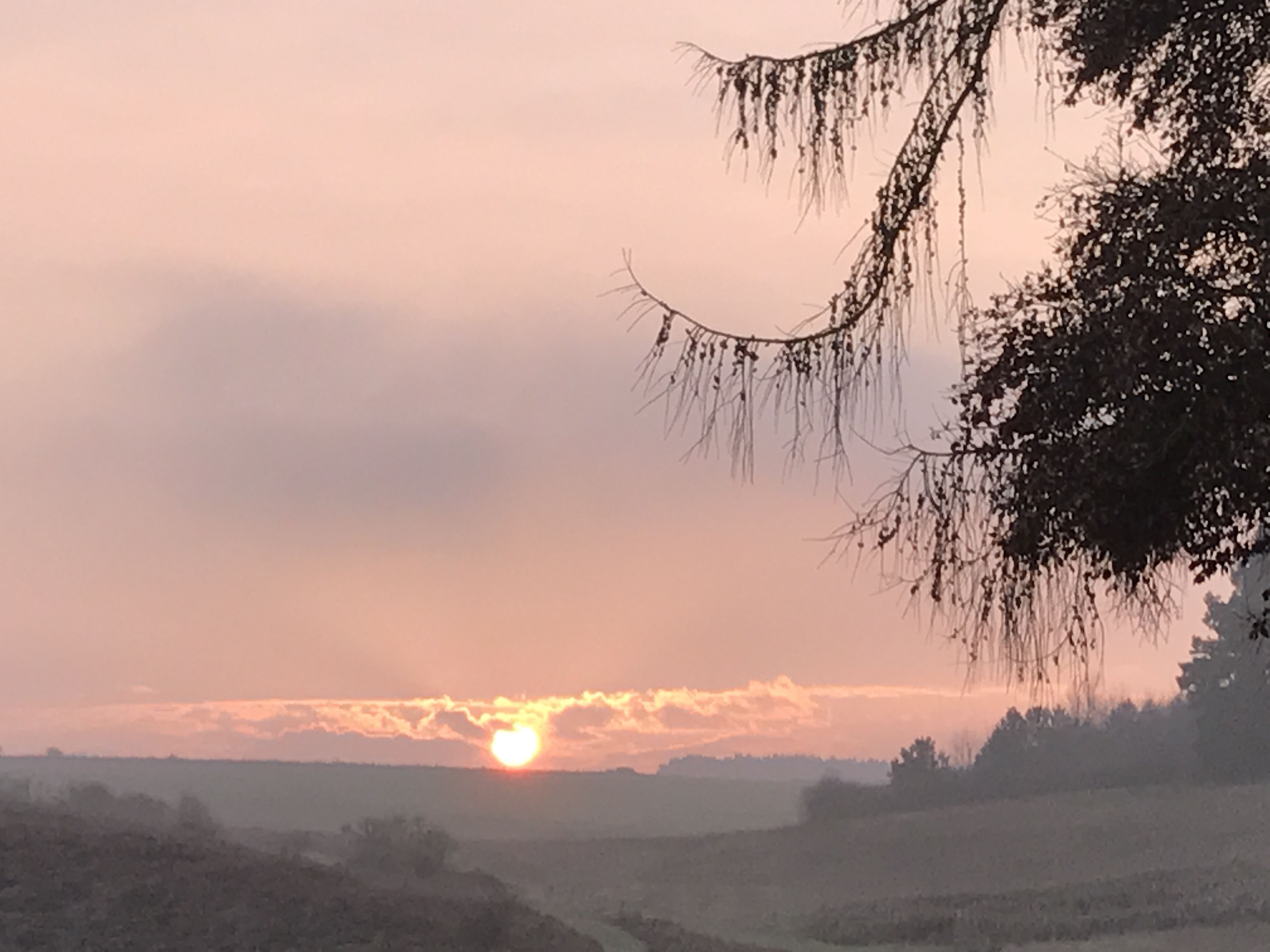 The sunsets around Happy Valley Norfolk - Glamping - Woodlands - Venue  email ; hello@