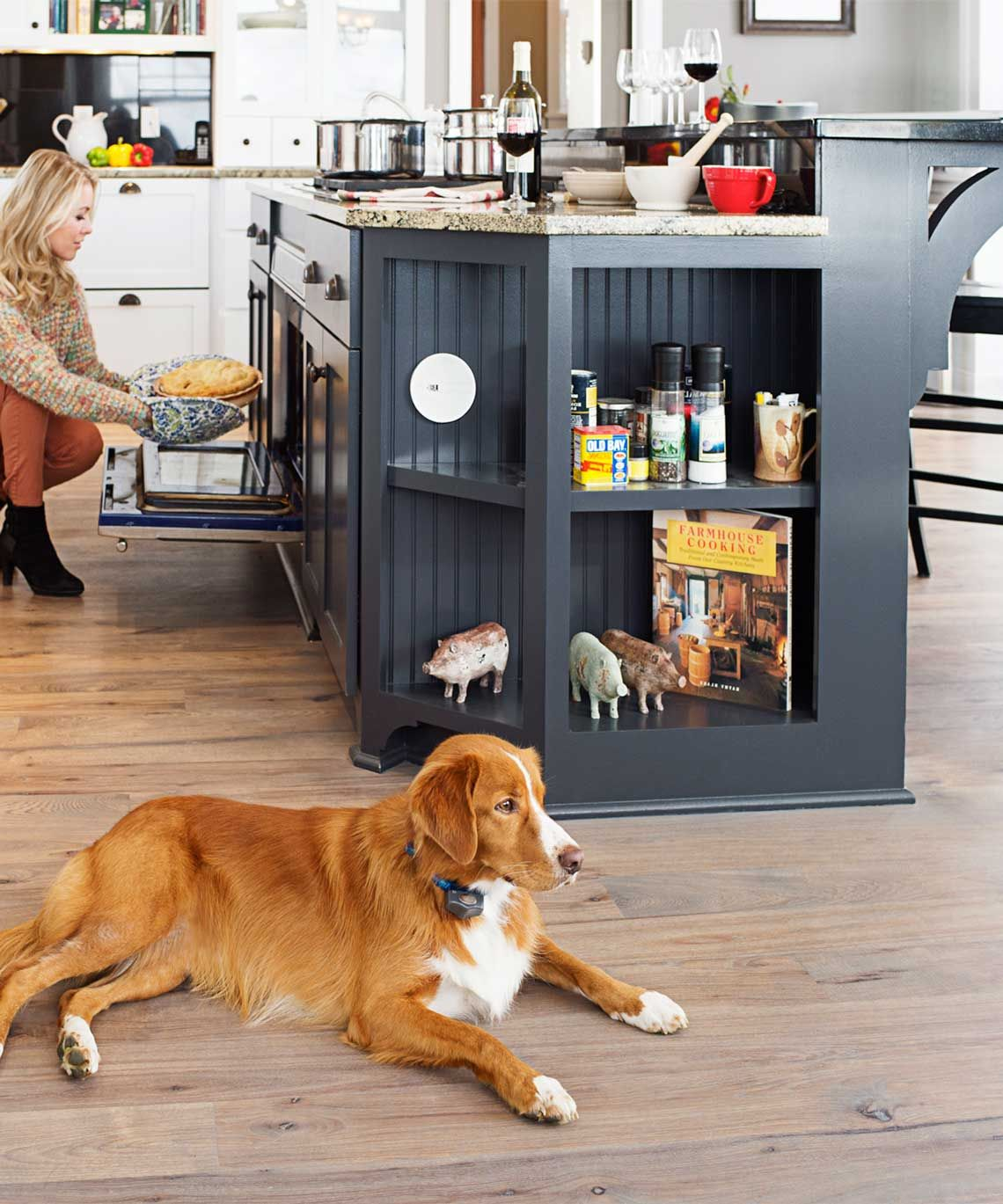 Indoor Fence & Barrier Solutions for Dogs and Cats The