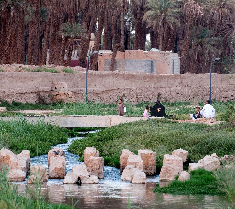 Image Result For Wadi Hanifa Wetlands Desert Landscaping Wetland Landscape