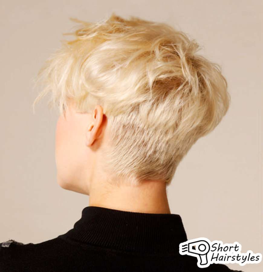 Short Hairstyles For Thick Hair Back View Haired Women Attach Great Importance To The Especially In Blunt