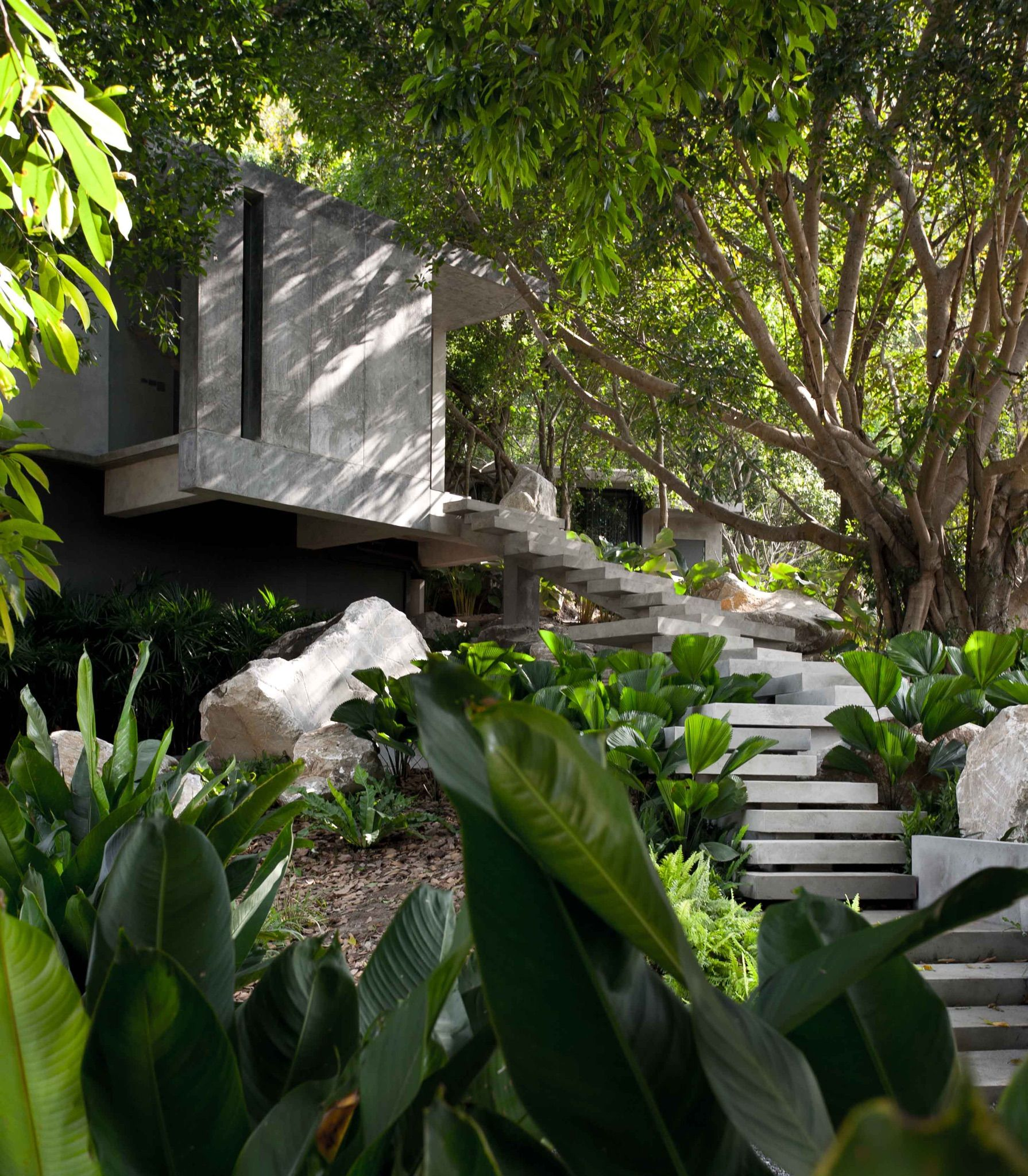 The Creek Hill Top House Khaoyai Thailand Architecture And Landscape Design By Opnbx Openbox Architects