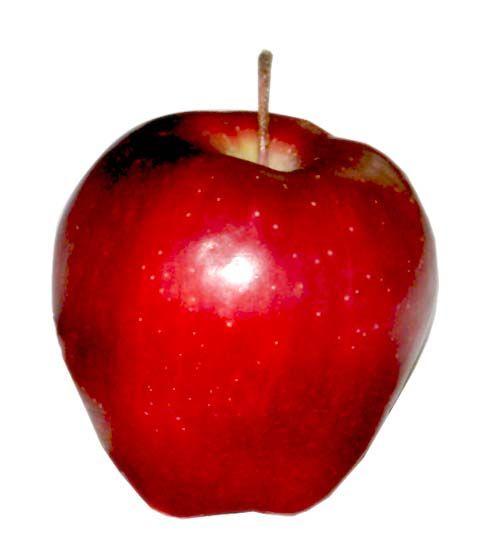 Fruits And Vegetables For Kindergarten Fruit Picture Fruit