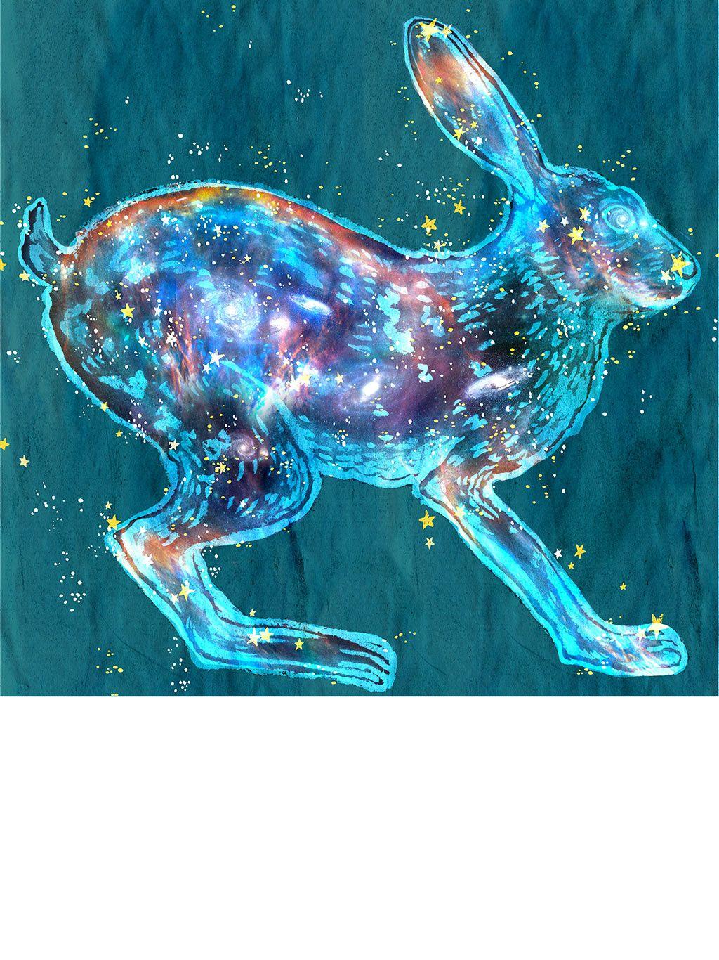 Yuko Shimizu Lapin Art Art Animalier Dessin Lapin