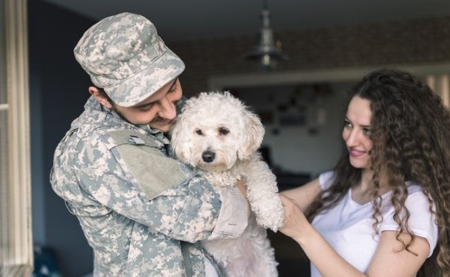 Obama Closes Animal Cruelty Loophole for International US Military Bases
