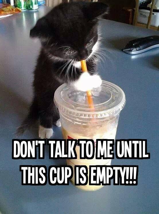 Non rivolgermi la paro finchè il bicchiere è pieno!