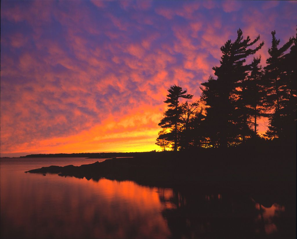 Sunset Nature Silhouette