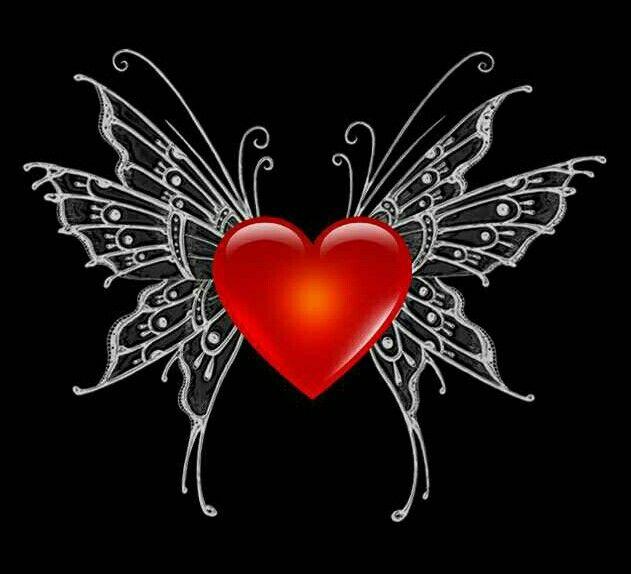 Butterfly heary