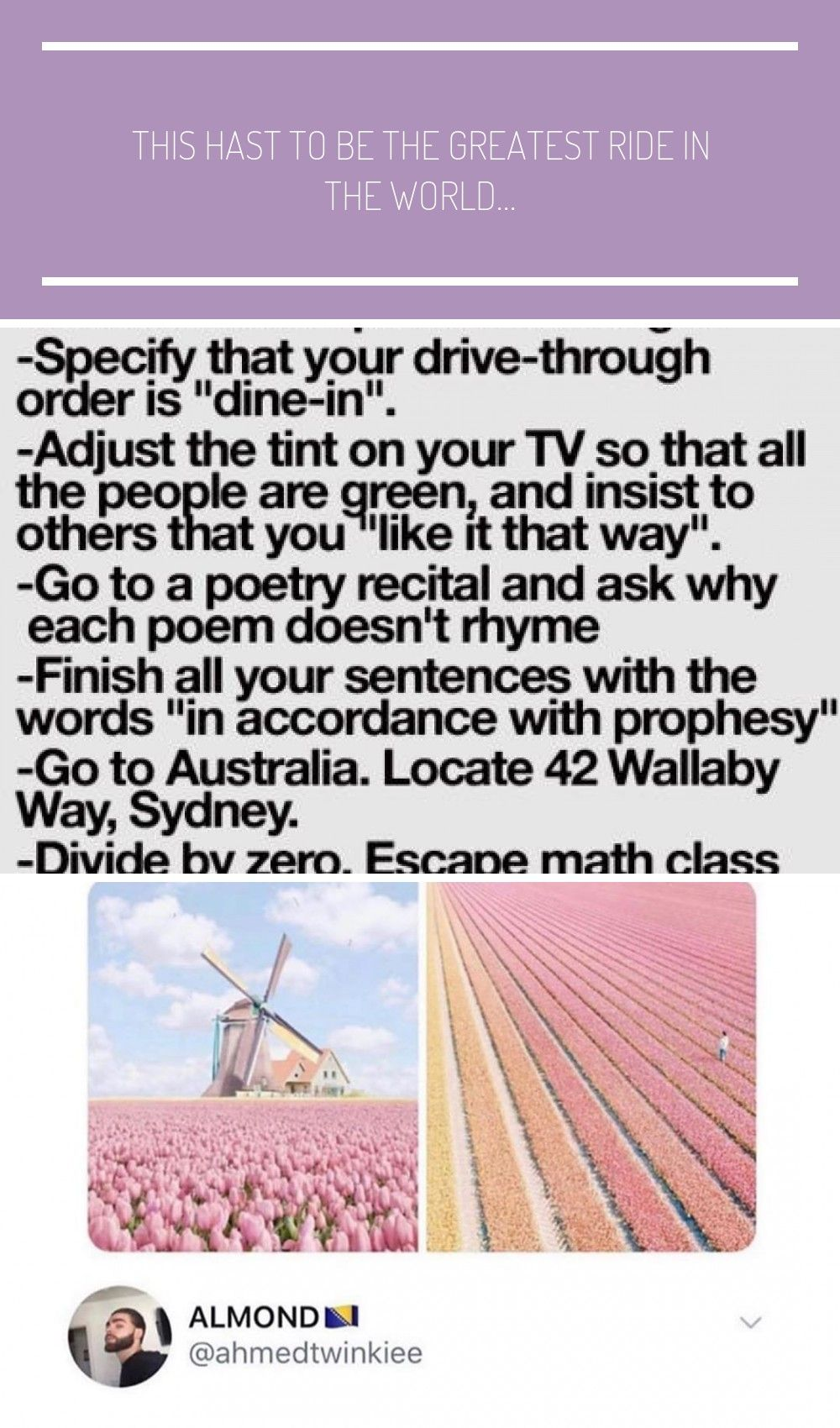 Funny Bucket List Tumblr With Images Funny Bucket List Funny