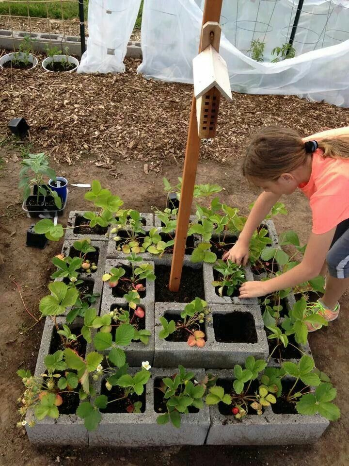 how to make easy raised garden beds