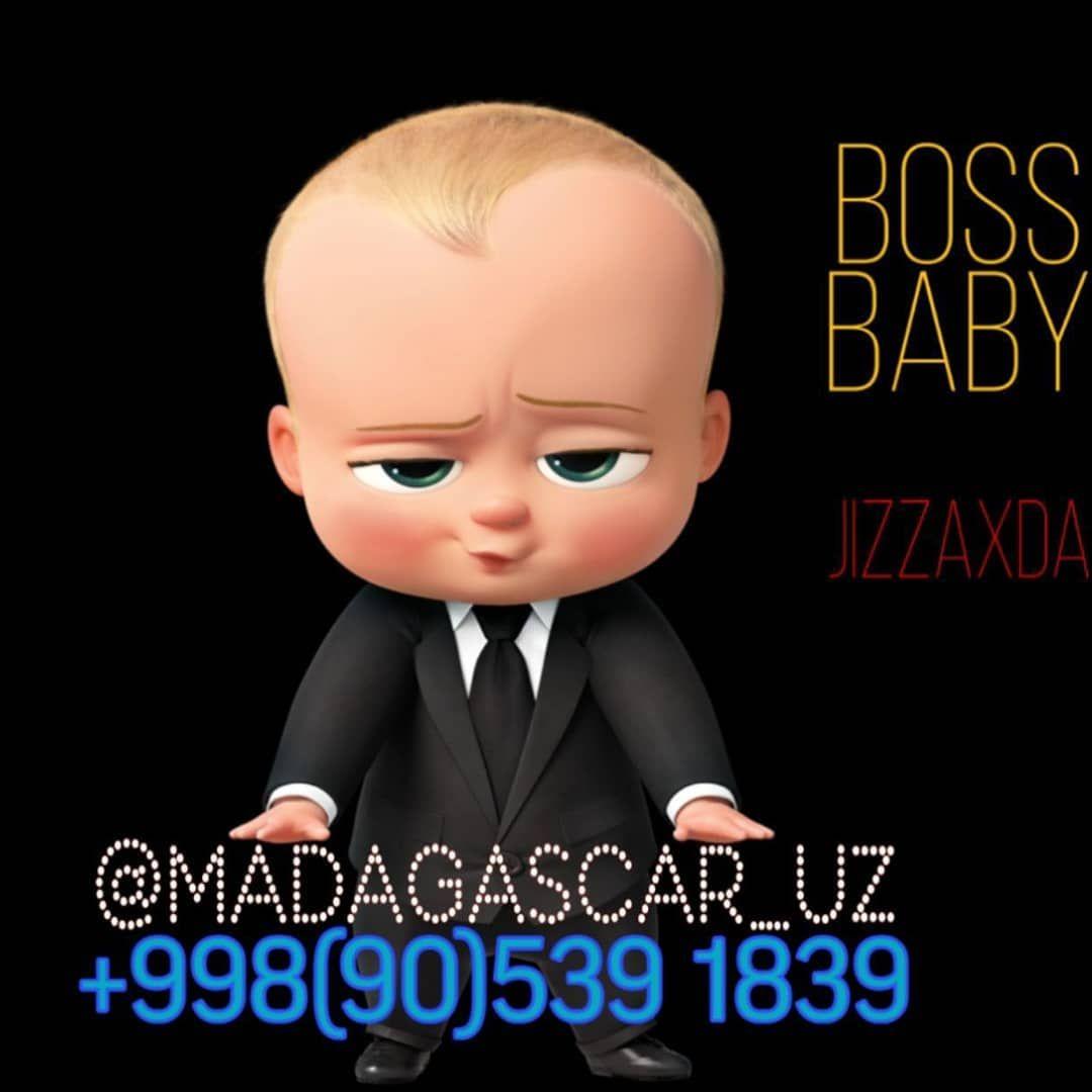 Boss Malakasos Endi Madagascar Da Boss Baby Baby Boss