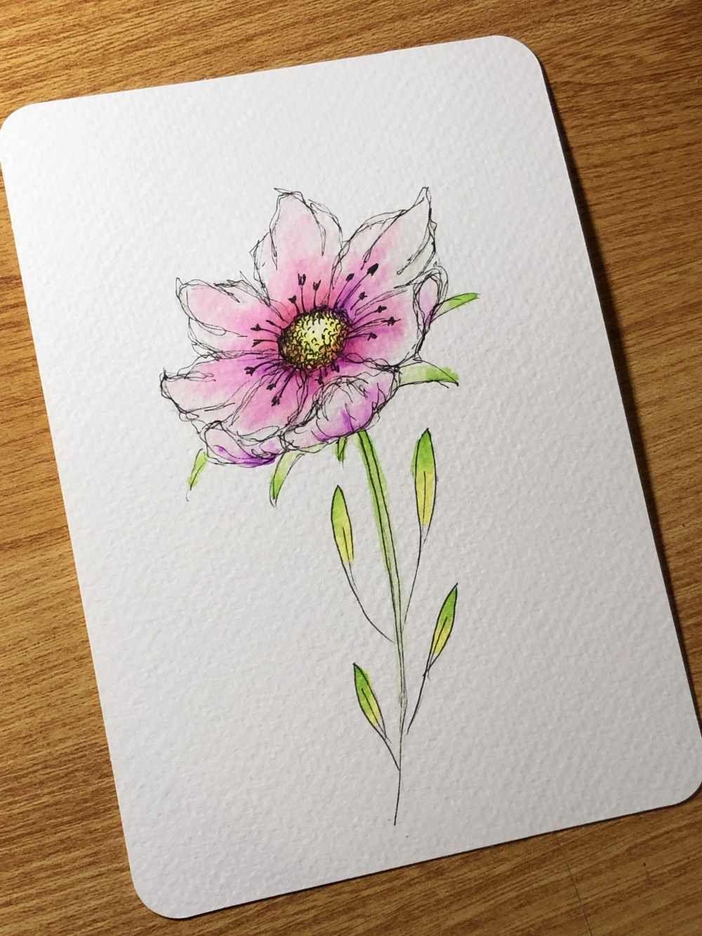 Letter Lovers J Belach Zu Gast Im Lettering Interview In 2020 Blumen Zeichnen Einfach Zeichnen Blumen Zum Zeichnen