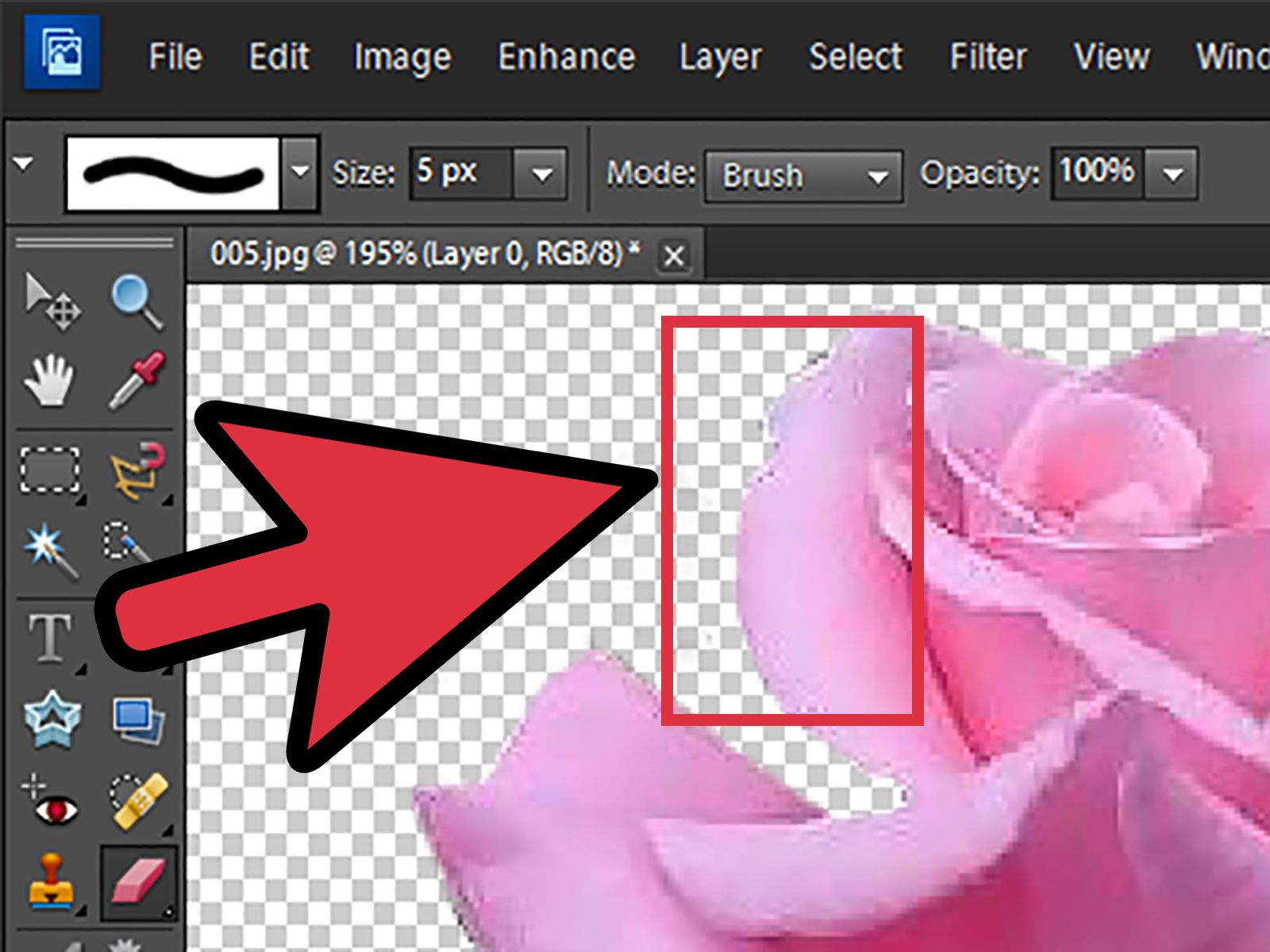 Remove Background With Elements Lightroom