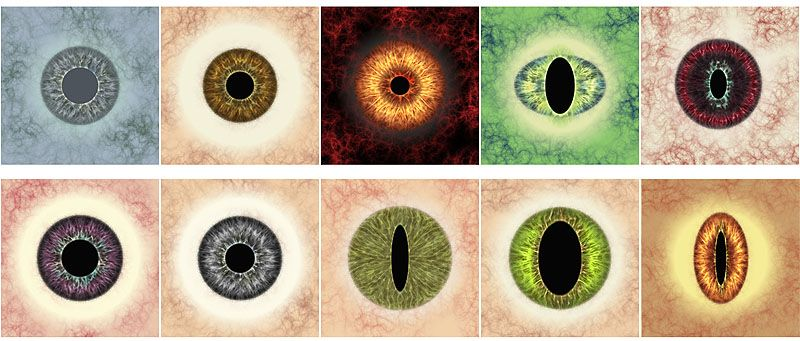 free eyeball template for crafts jeepers peepers easy eyes for