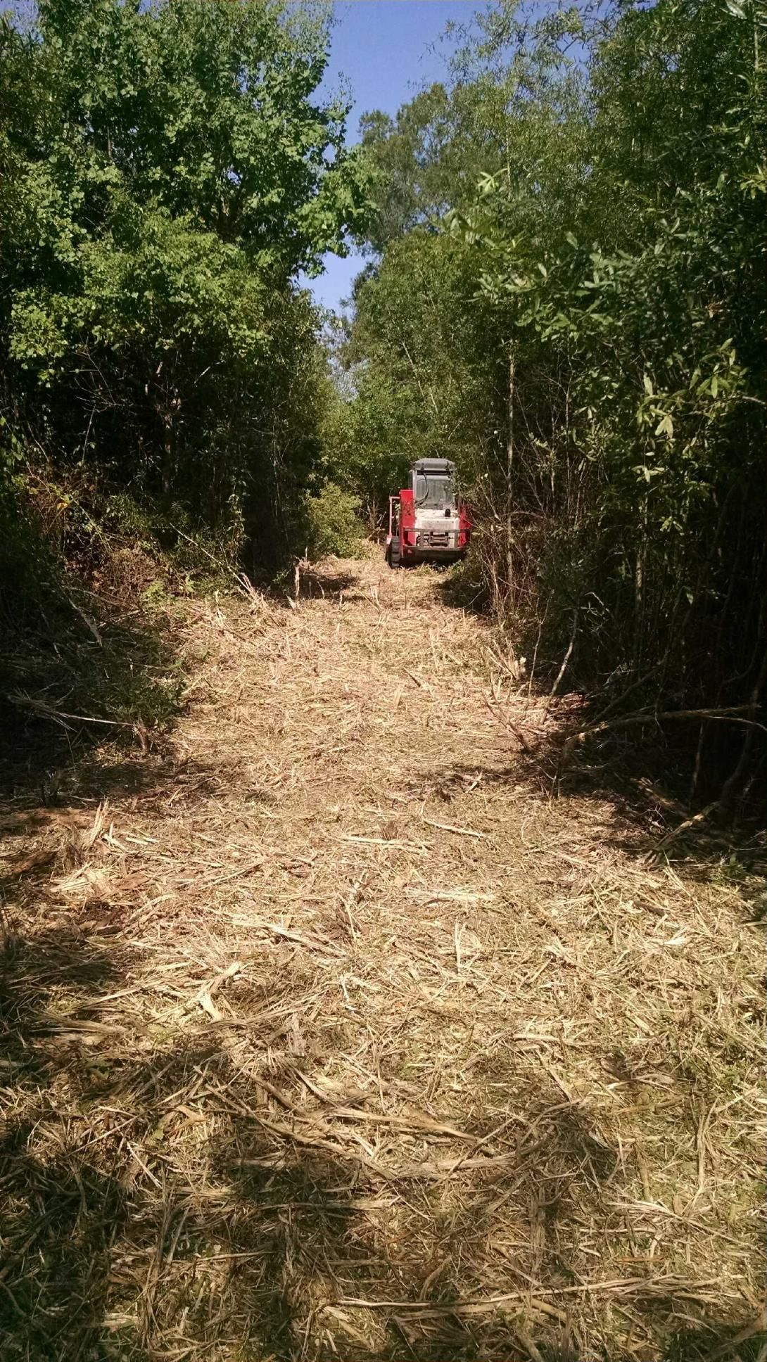 Hydro ax mulching and fence line clearing in waller texas