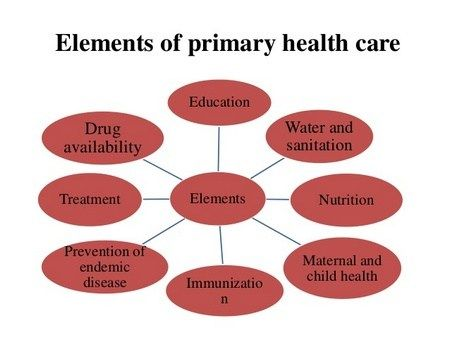 Key Elements Of Primary Health Care Phc Health Care Community Health Nursing Health