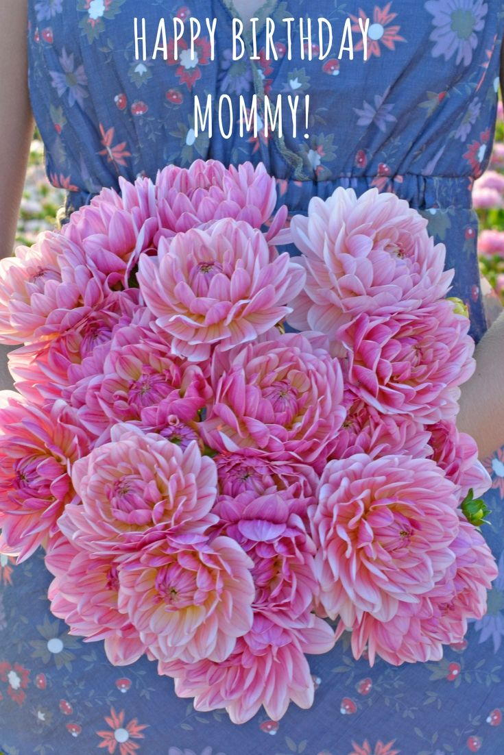 A bigh bunch of dahlias freshly picked from the field are the best a bigh bunch of dahlias freshly picked from the field are the best birthday gift mommy can imagine there is a little secret flower garden quotes izmirmasajfo