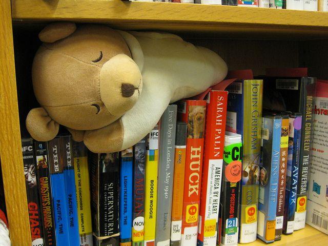 Image result for teddy bear sleepover library ideas