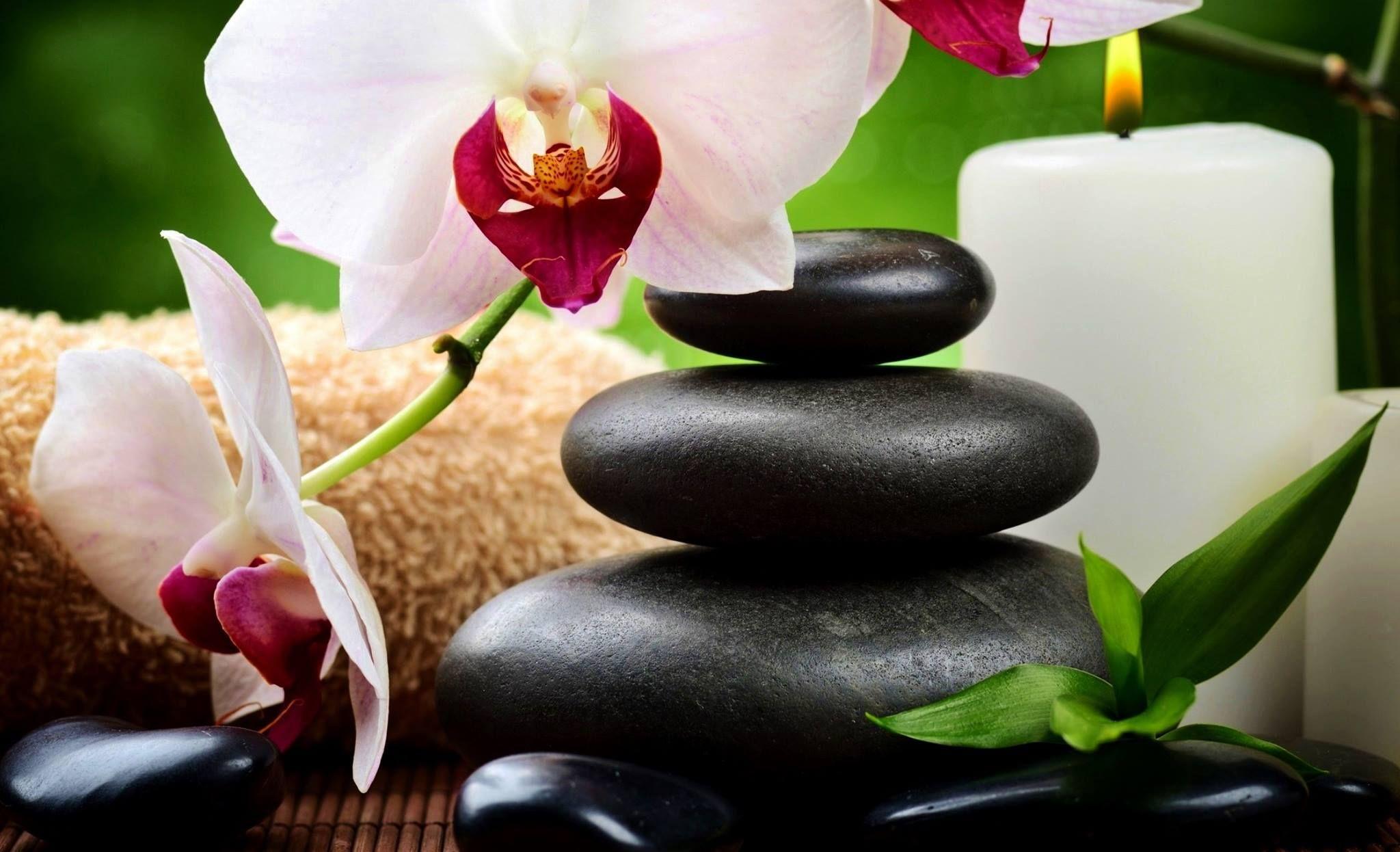 zen attitude recherche google positive attitude zen. Black Bedroom Furniture Sets. Home Design Ideas