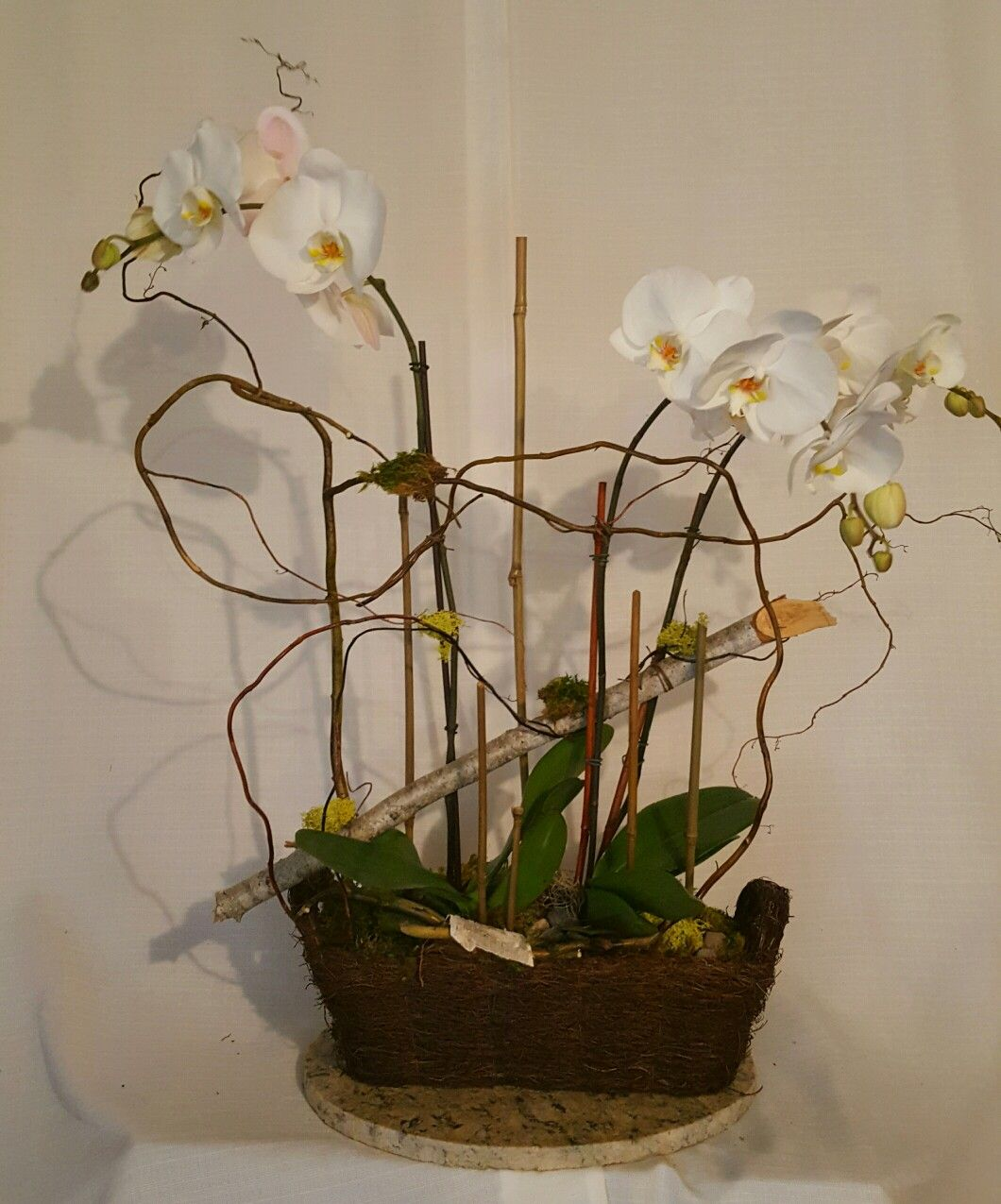 Lovely orchids with bamboo accents create soothing beauty in your