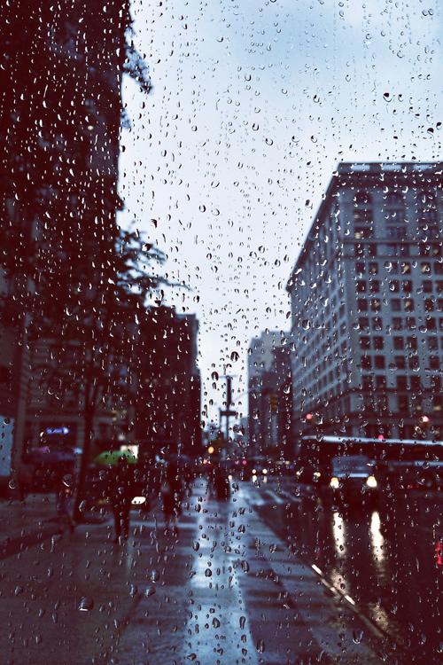autumn, city, cold, grey, misty, rain, winter