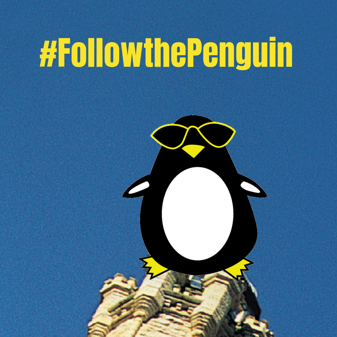 Can You Followthepenguin To See Where He Landed Visit Our