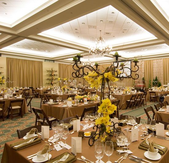 The Edgewater Reviews Ratings Wedding Ceremony: The Ballantyne Hotel & Lodge Charlotte NC