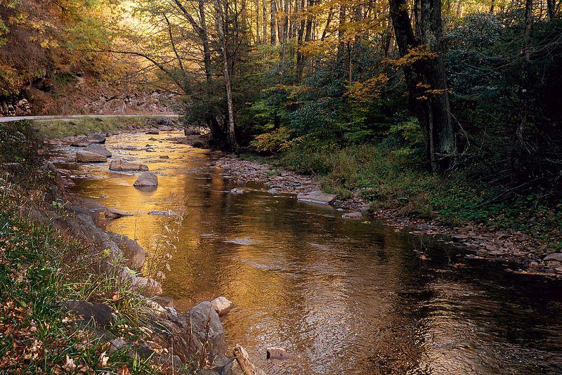Golden stream west virginia randolph county appalachia